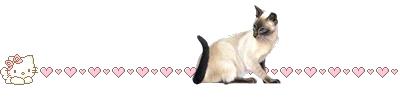 кошка (400x103, 17Kb)
