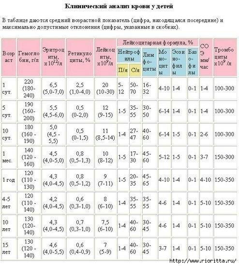анализ (1) (494x550, 188Kb)