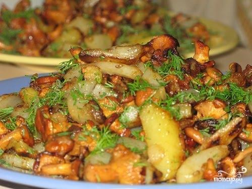 Рецепты с грибами лисичка