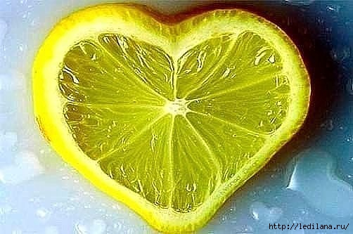 3925311_limon_serdce (502x333, 99Kb)