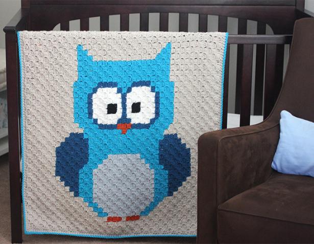 OwlC2C_photo2 (615x477, 408Kb)