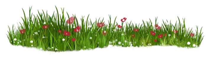 grass-17- (700x199, 173Kb)