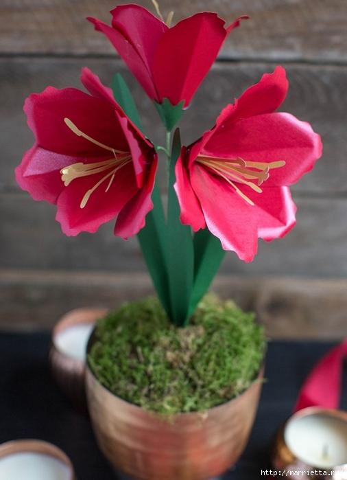 Амариллис - цветы из бумаги своими руками (1) (506x700, 203Kb)