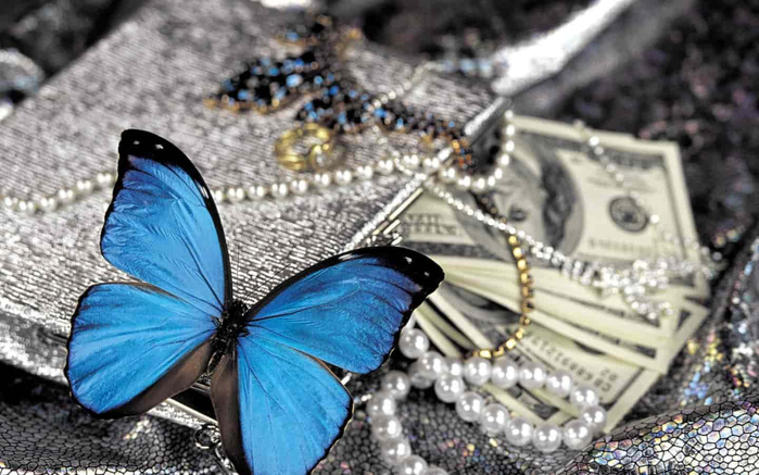 butterfly-money-4-Size-Wall-decoration-Canvas-Poster-Print-min (700x437, 311Kb)