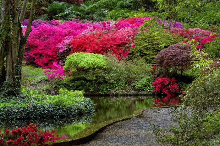 3. Английский Сад Эксбери . (700x467, 540Kb)
