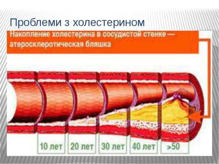 img19 (700x525, 311Kb)