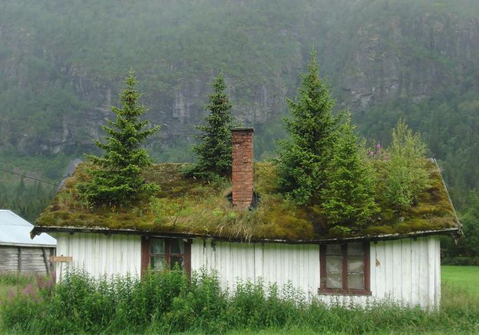 Деревушка в Норвегии возле горы Иннердален1а (700x489, 390Kb)