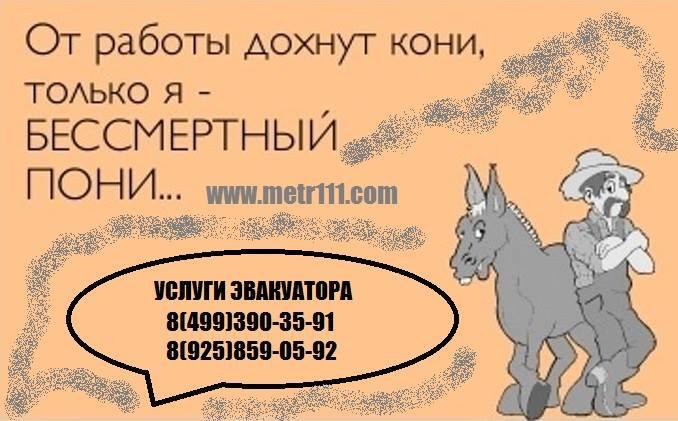 11949486_1628387617442118_1792021995355115444_n (678x421, 50Kb)