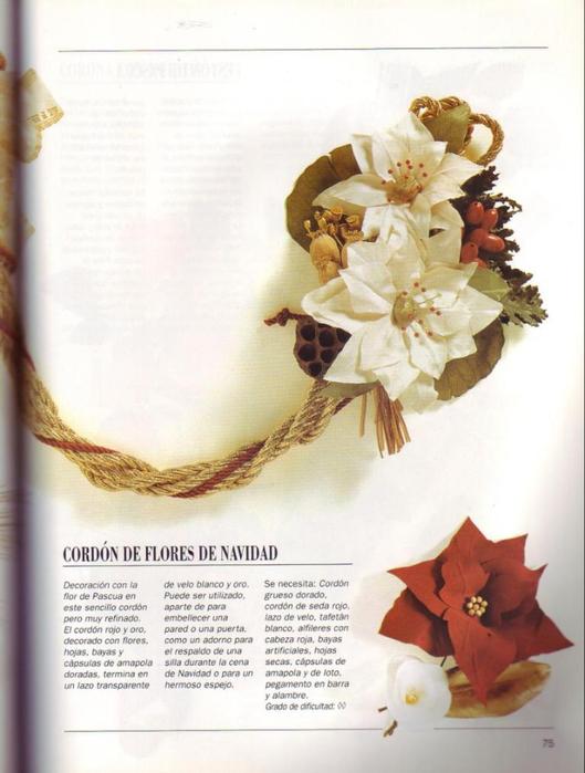 FLORES DE TELA PAG.75 (529x700, 290Kb)