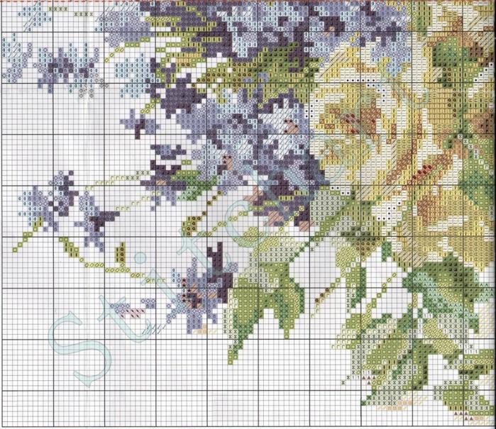 Stitchart-rozy-i-vasilki5 (700x605, 535Kb)
