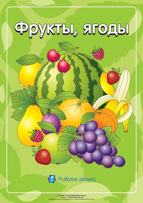 CD_Fruits_rus_ua-1 (494x700, 220Kb)