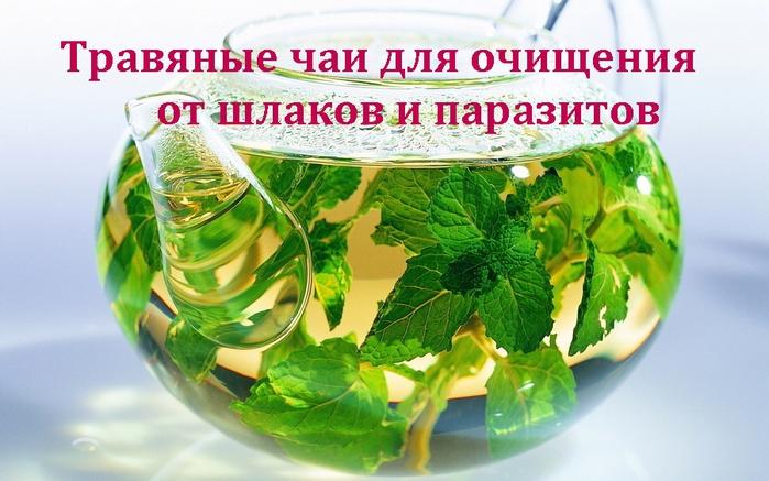 2835299_Travyanie_chai_dlya_ochisheniya (700x437, 260Kb)