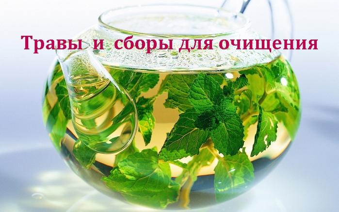 2835299_Travi__i__sbori_dlya_ochisheniya (700x437, 250Kb)