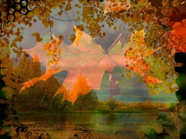 autumn-196566_640a (640x480, 565Kb)