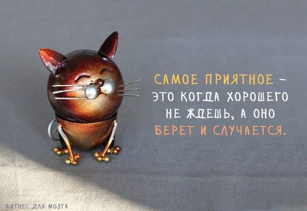 3085196_1384452054_frazochki1 (604x416, 45Kb)
