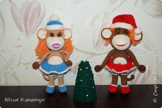 Вяжем симпатичную новогоднюю обезьянку/1783336_353797_dsc09202 (520x347, 38Kb)