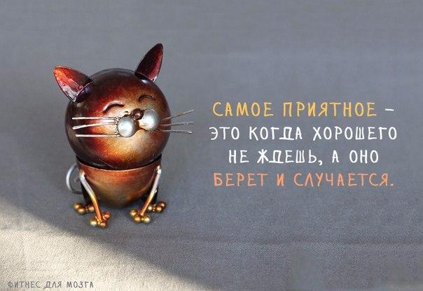1384452054_frazochki-1 (604x416, 170Kb)