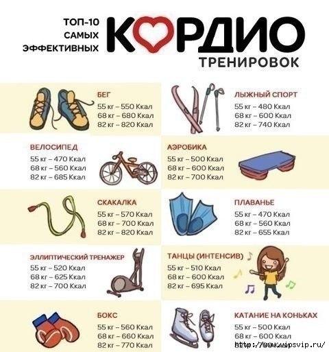 5745884_kardio_trenirovki (480x513, 124Kb)
