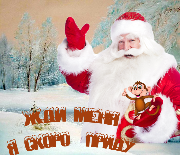 5053532_ded_moroz__obezyanka (700x602, 603Kb)