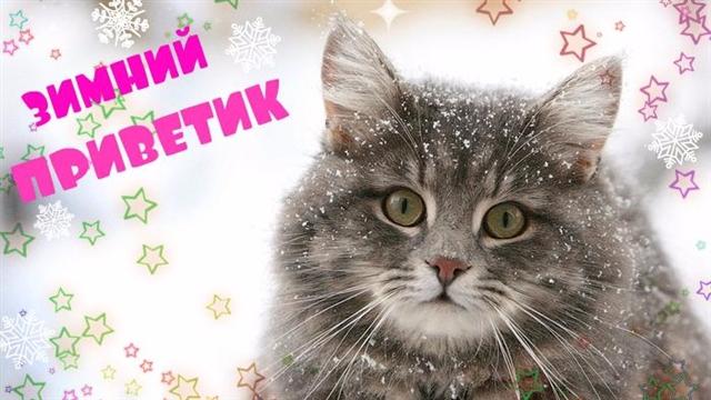 Зимний приветик! (640x360, 243Kb)