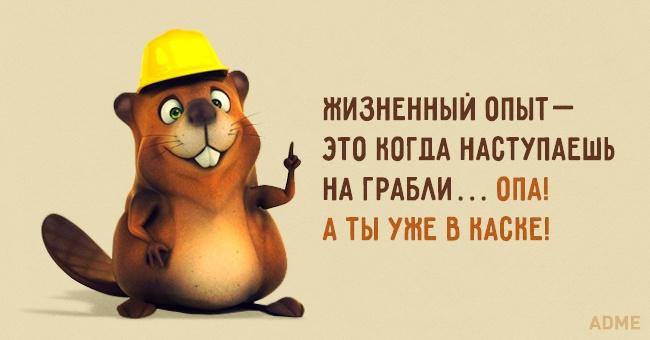 5761818_18635310R3L8T8D6504 (650x340, 64Kb)