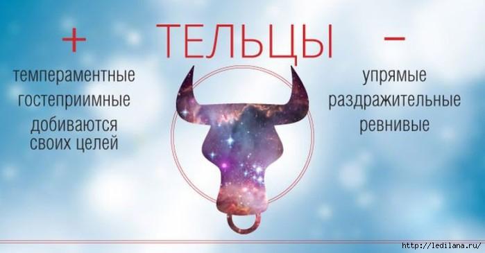 3925311_Plusi_i_Minysi_telci (700x365, 102Kb)