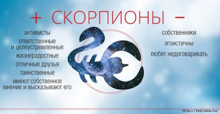 3925311_Plusi_i_Minysi_skorpion (700x365, 119Kb)