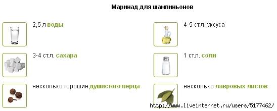 5177462_Image_4 (548x220, 42Kb)