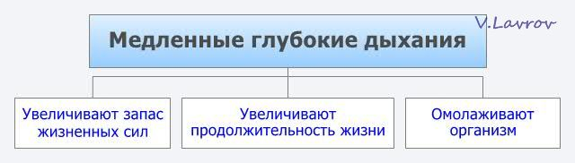 5954460_Medlennie_glybokie_dihaniya (640x182, 18Kb)