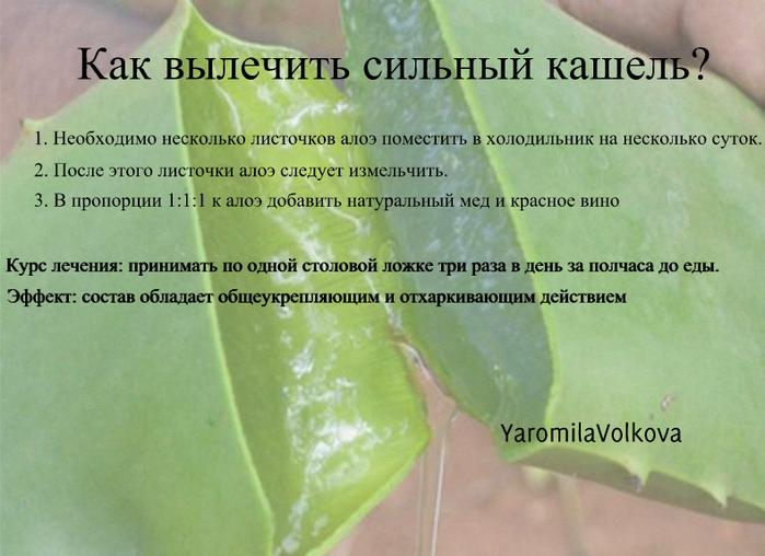 4716146_kakvilecitsilniykas (699x508, 454Kb)