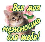 Clip2net_151205190735 (147x139, 34Kb)