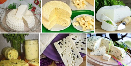 Рецепты домашней брынзы фото