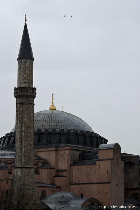 Стамбул (19) (466x700, 147Kb)