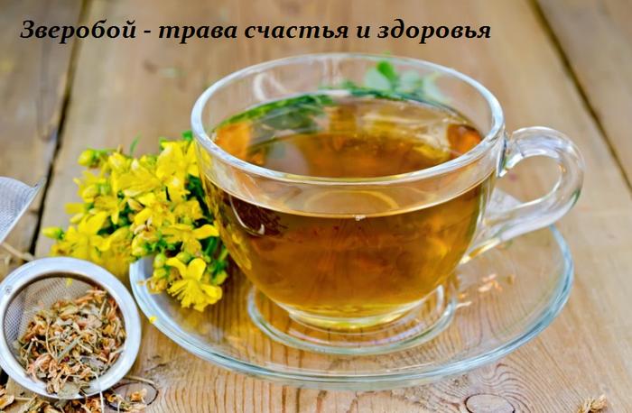 1461057183_Zveroboy__trava_schast_ya_i_zdorov_ya (700x458, 483Kb)
