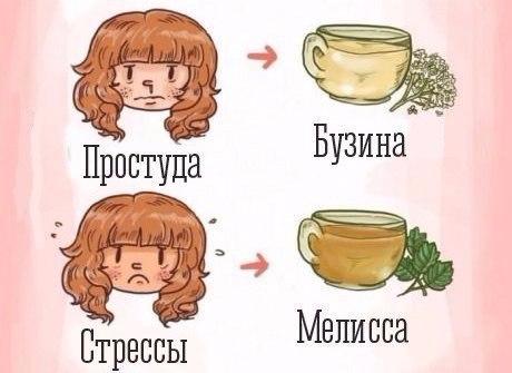 чай2 (460x335, 116Kb)