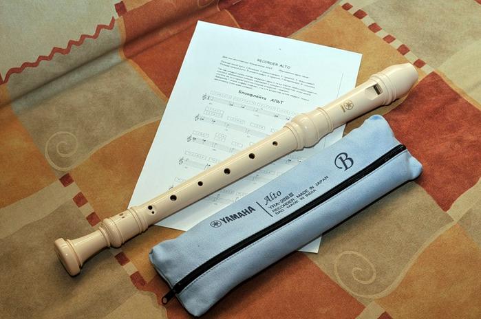 Концертный альт.lamov77.янд. (700x464, 355Kb)