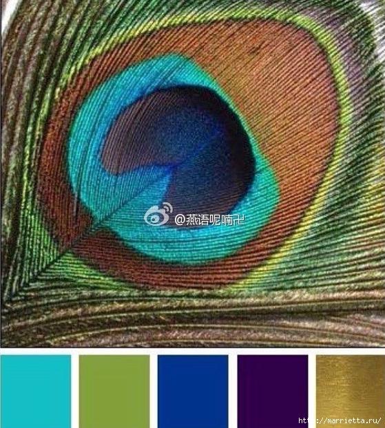 Вяжем крючком перо павлина (1) (559x622, 297Kb)
