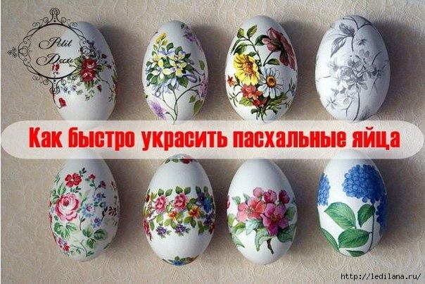 3925311_dekypaj_yaic (604x403, 174Kb)