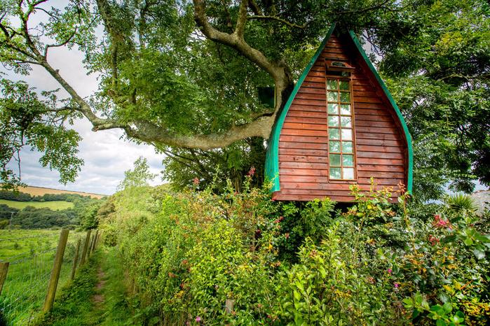 домик на дереве фото 1 (700x466, 678Kb)