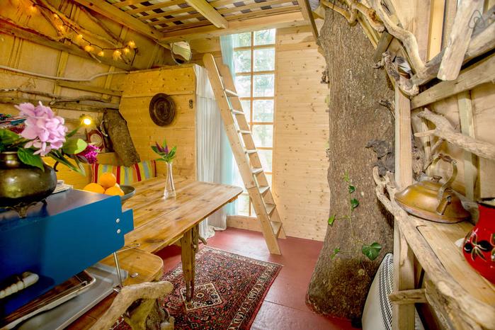 домик на дереве фото 3 (700x466, 486Kb)