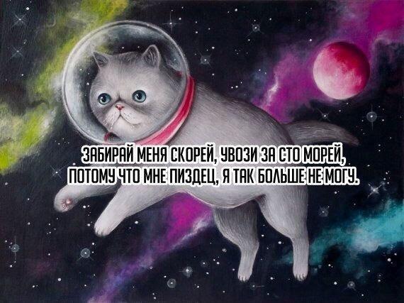 IMG_8203 (570x427, 65Kb)