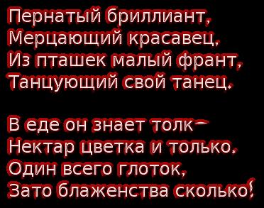 cooltext178857123276010 (372x293, 111Kb)