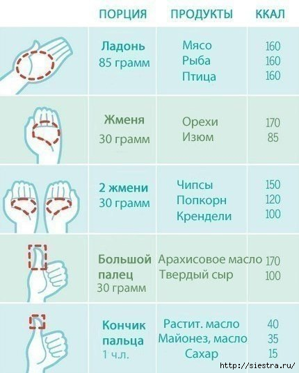 5463572_kak_izmerit_porciu_v_ladoni (430x537, 91Kb)