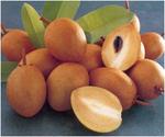 Превью fruit_6 (507x423, 116Kb)