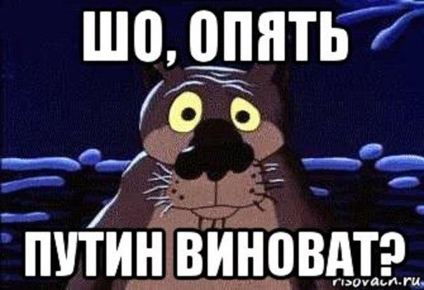 5326834_gypositynow (604x413, 49Kb)