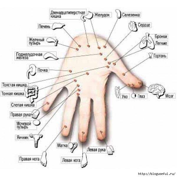точки на руке