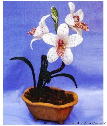 orhideya (419x494, 119Kb)