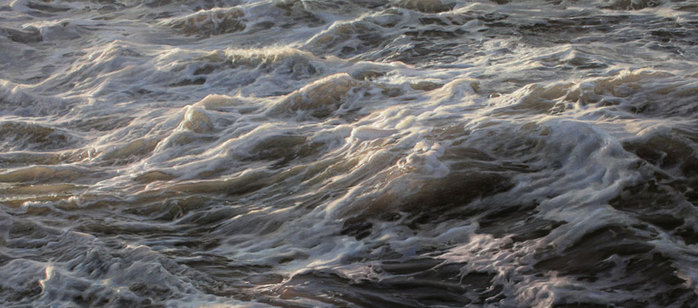 ran-ortner-seascapes-artis-oracle-fox-10 (700x308, 72Kb)