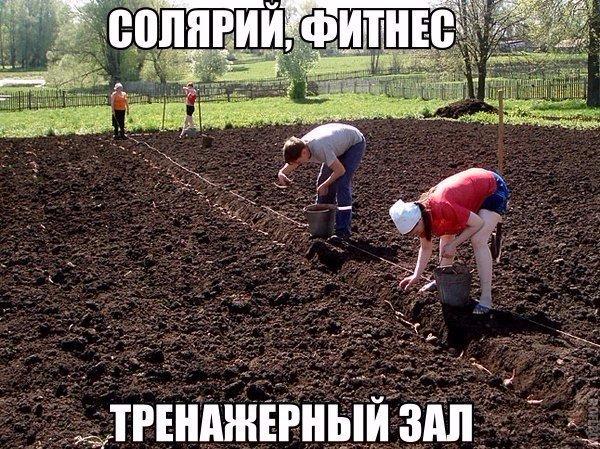 Такое возможно только в России2 (600x449, 420Kb)