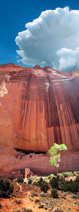 Canyon de Chelly National Monument (262x700, 227Kb)